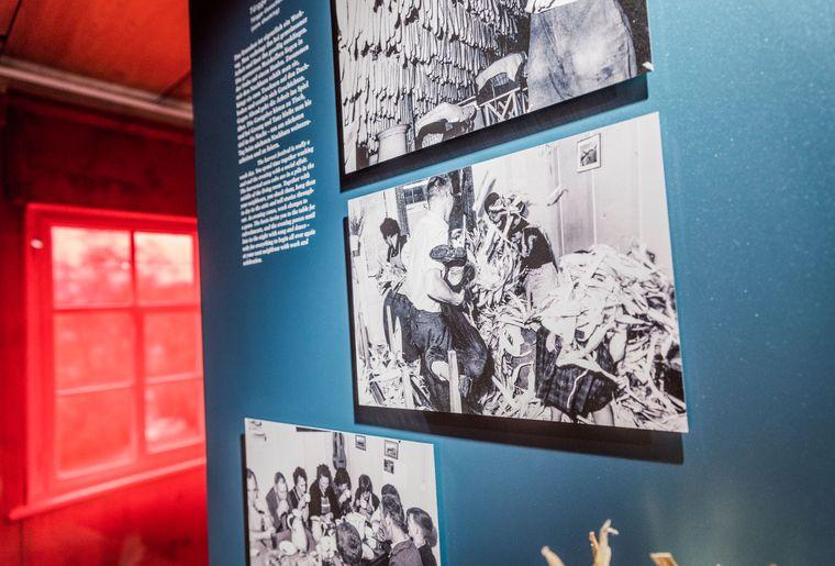 Museum_Schlangenhaus_┬®Daniel_Ammann_080.jpg