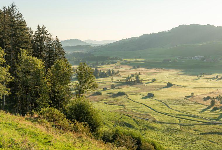 hochmoor-rothenthurm-erlebnisse-erlebnisregion-mythen_7.jpg