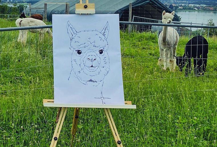 Malen mit Alpakas.jpg