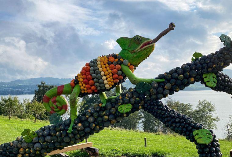 Juckerfarm Kürbisausstellung 2021 2.jpg