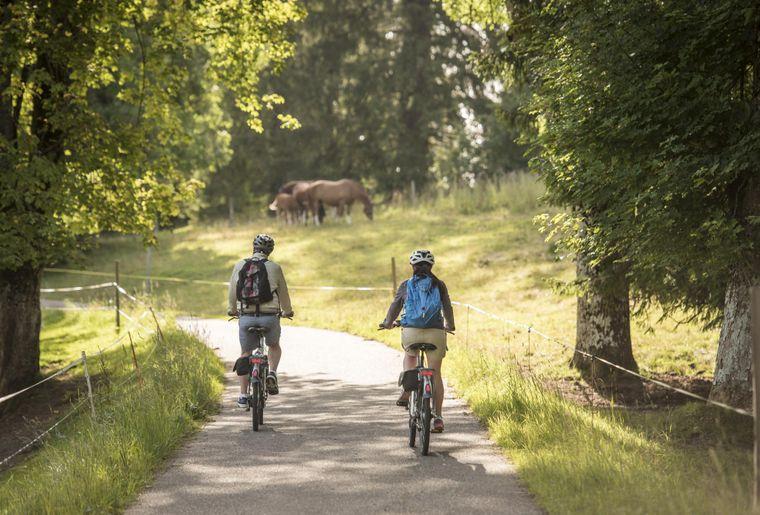 La Route Verte. © Switzerland Tourism Andre Meier.jpg