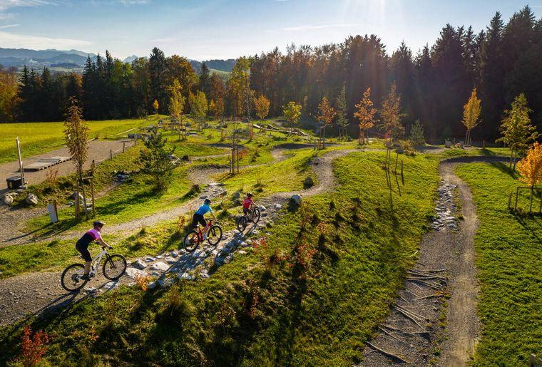 Swiss Bike Park Oberried 3.jpg
