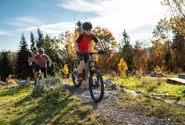 Swiss Bike Park Oberried 4.jpg