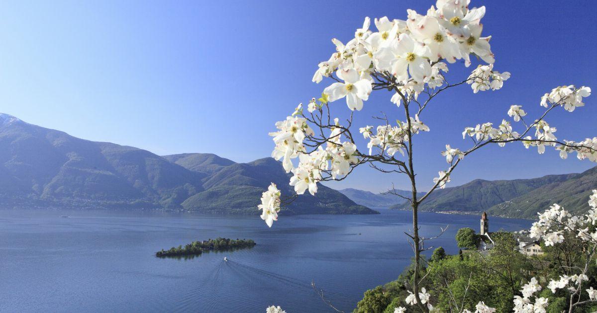 Die schönsten Inseln der Schweiz: Brissago-Inseln im Lago Maggiore