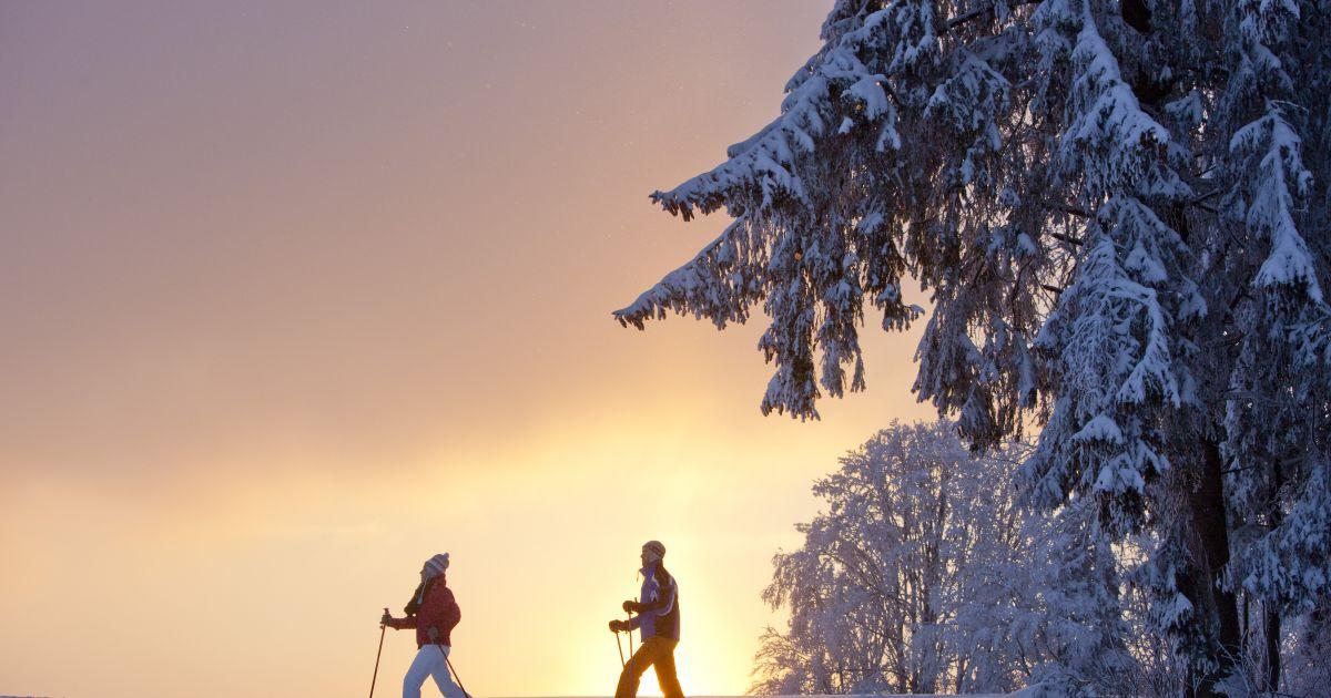 Schneeschuhwanderungen in der Jura-Region