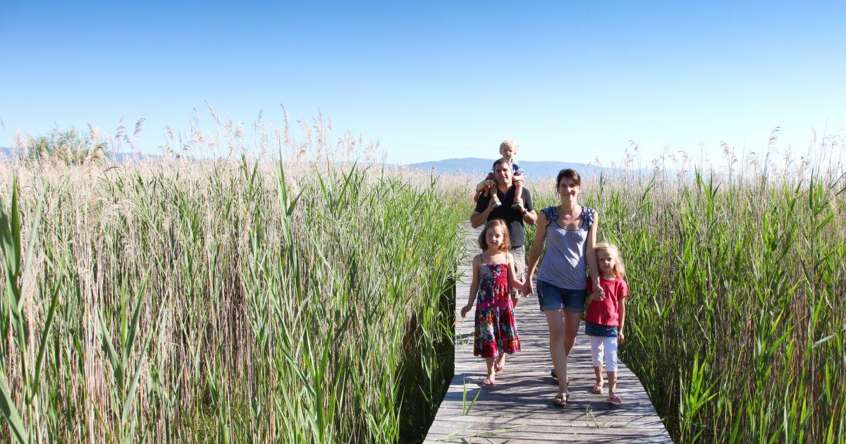 Von Estavayer-le-Lac nach Murten: Tiere und Sanstrand
