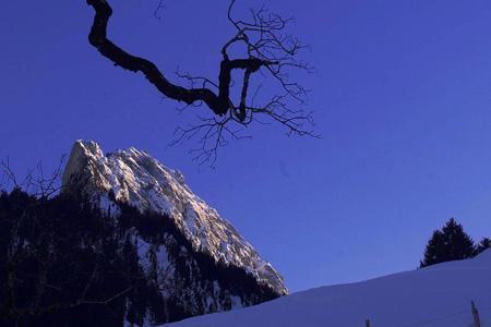 Winterwandern im Kiental