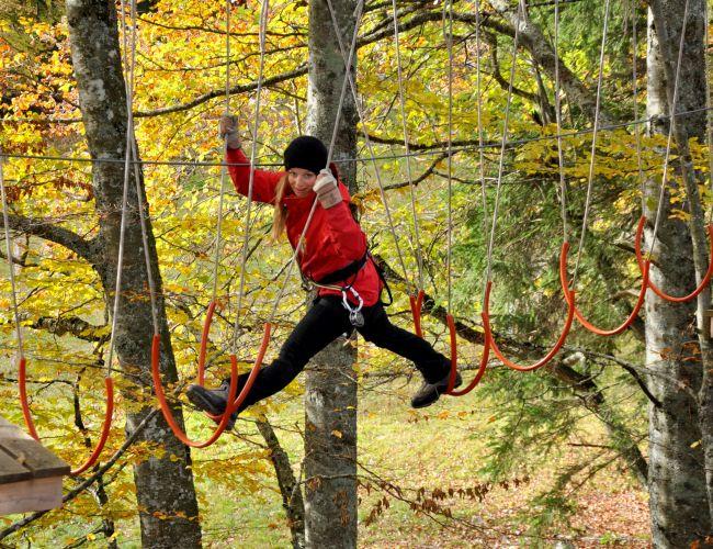 Nervenkitzel pur im Seilpark Forest Jump