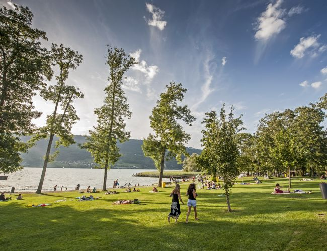 Der Campingplatz Sutz liegt direkt am Bielersee