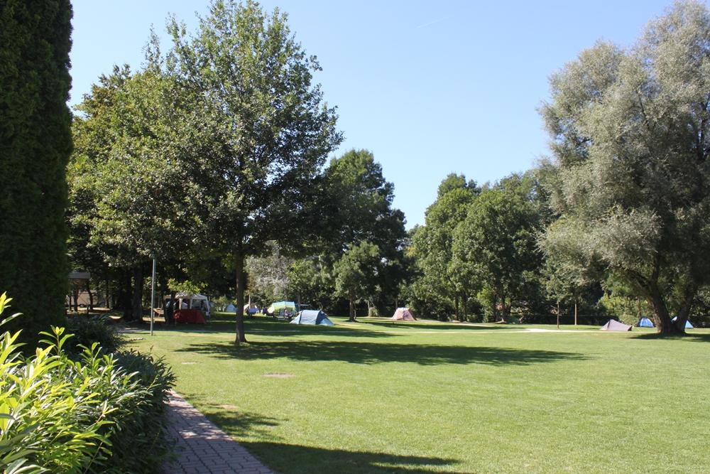 Das Camping Eichholz liegt direkt an der Aare