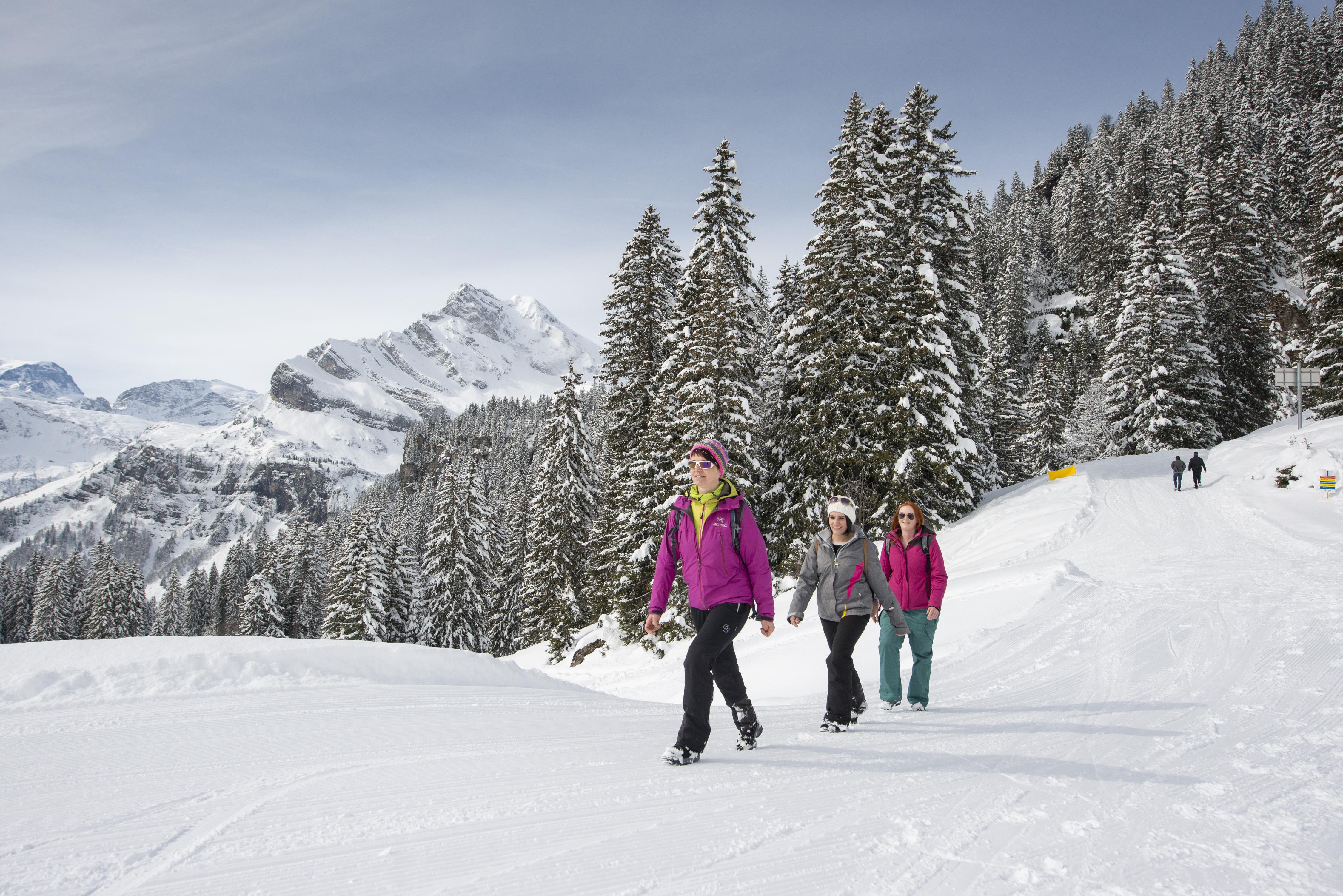 Gourmet Winterwanderung Braunwald