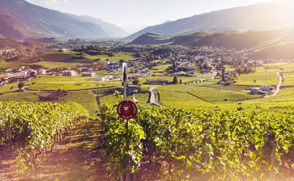 Weinmuseum in Sierre und Salgesch