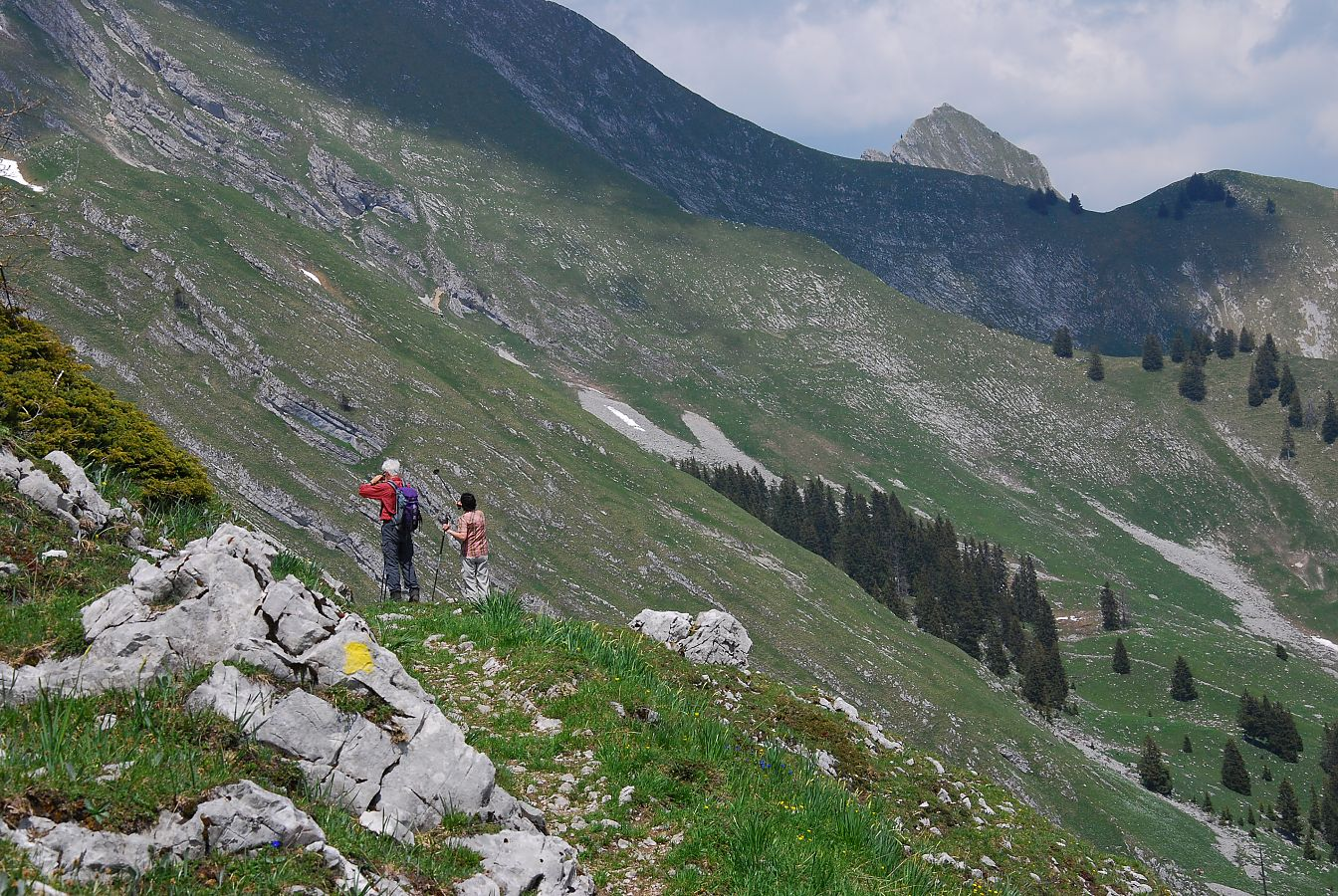 Regionaler Naturpark Gruyère Pays-d'Enhaut