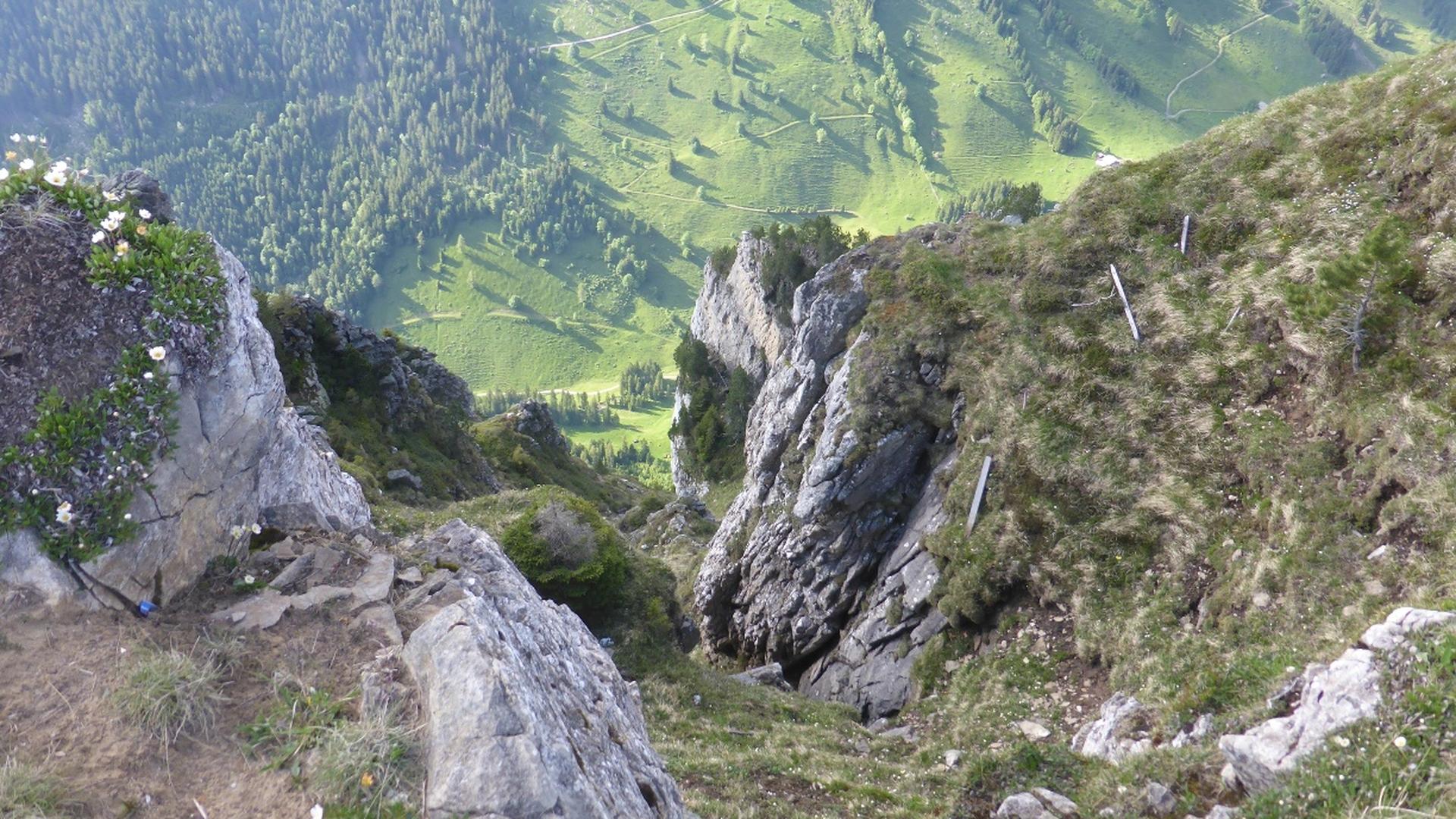 Bärenpfad auf das Niederhorn