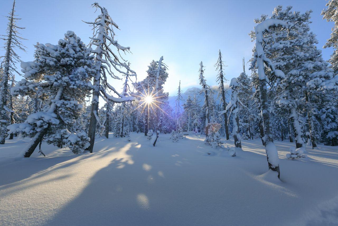 Winterwandern Sörenberg