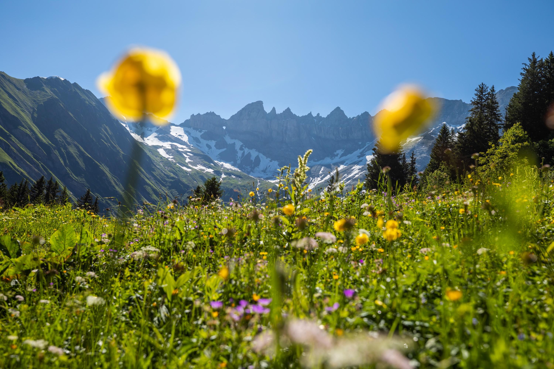 Martinsloch Sardona Glarnerland Glarus