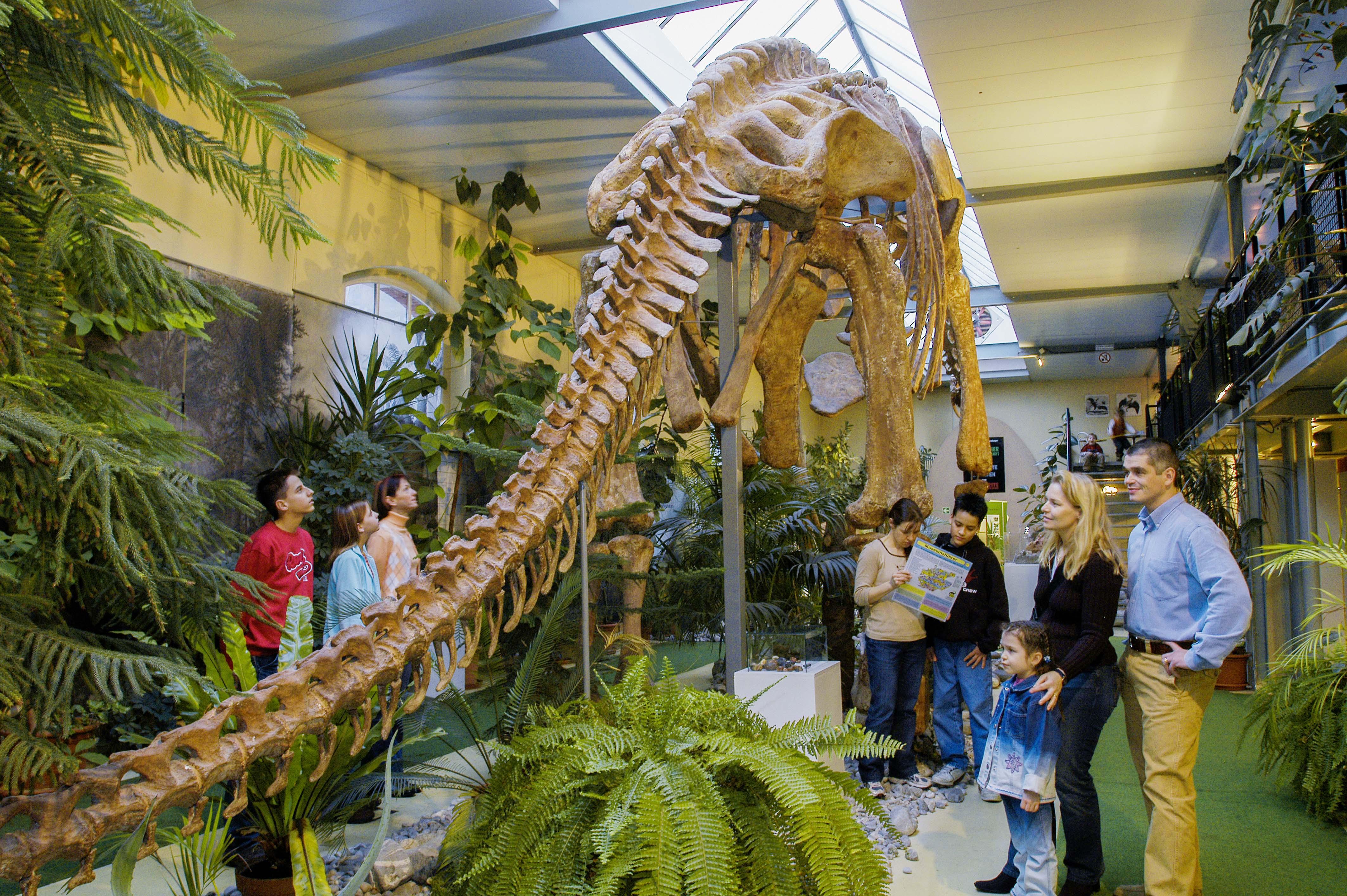 Im Sauriermuseum Aathal werden die Dinos lebendig